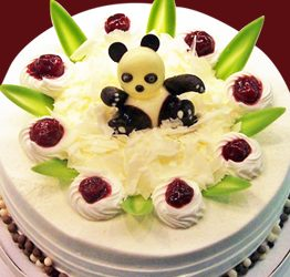 小熊貓(MF22)